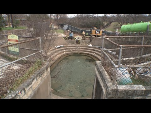 Barton Springs Pool emptied to create better environment for salamanders
