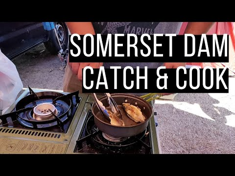 Somerset Dam Fishing, Catch And Cook