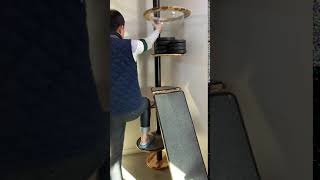 펫편한세상 아카시아원목 캣폴 원형스텝 70kg가량의 남…
