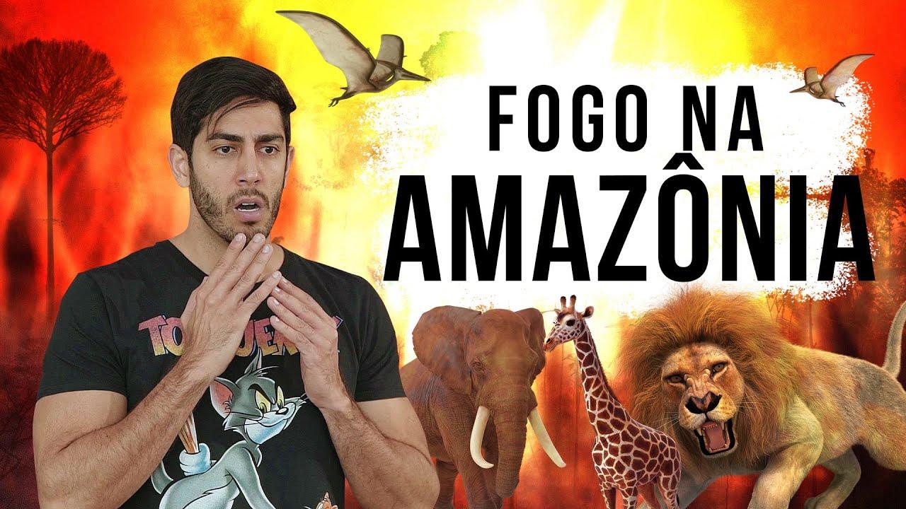 Fogo na Amazônia - DESCONFINADOS (Erros no Final)