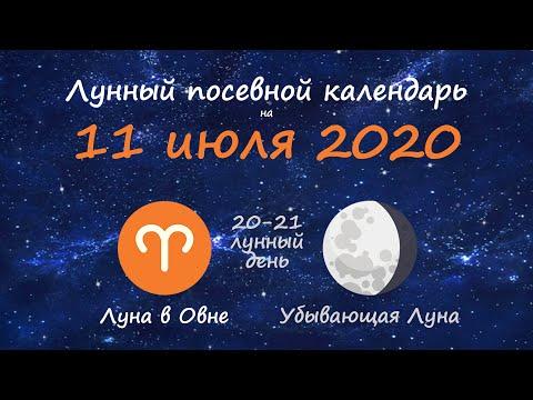 [11 июля 2020] Лунный посевной календарь огородника-садовода