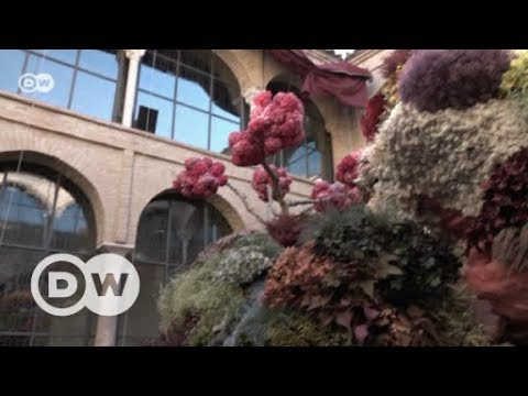 International Flower Festival Córdoba | DW English