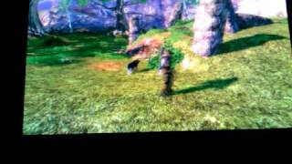 Fable 2 Limited Edition Master Chief. Dog Tricks and Torch demo