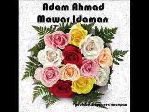Adam Ahmad - Mawar Idaman