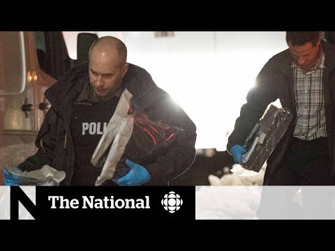 RCMP Charge Kingston, Ont., Youth With Terror-related Offence After Security Probe