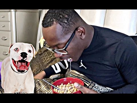 """DOG FOOD CEREAL PRANK"" ON HUSBAND!! (HE THREW UP)"