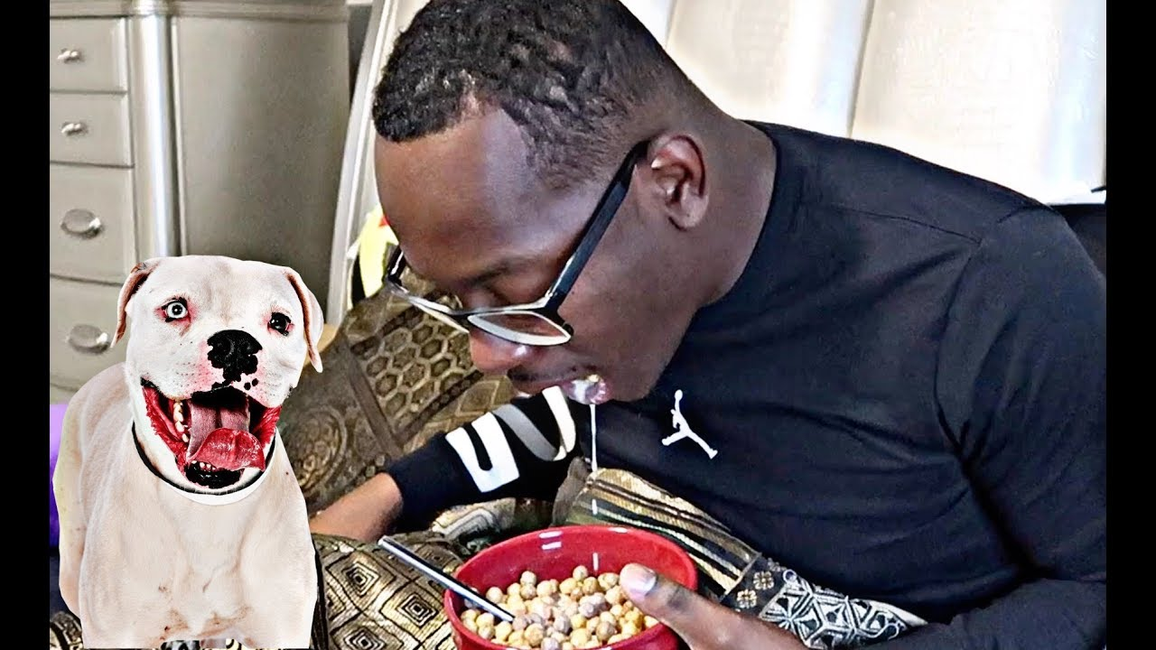 Dog food cereal prank on husband the prince family youtube dog food cereal prank on husband the prince family ccuart Gallery
