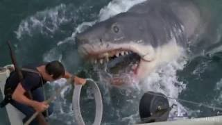 (심약자 주의) 영화 죠스 OST(John Williams Theme From Jaws)(OST Jaws)(1975)