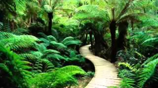 Happy Sad Piano Music Instrumental Beautiful Relaxing Song Long Solo Best Spa Meditation Background