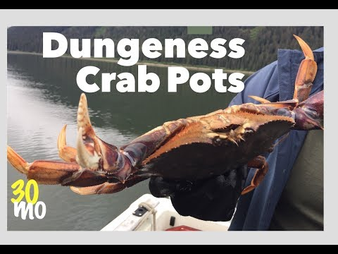 ALASKA #4 - Pulling Dungeness Crab Pots In Hoonah - Alaska Cruise Northern Dream