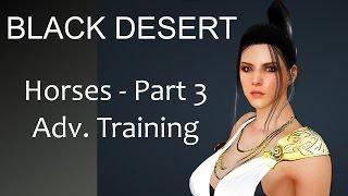 Black Desert Online Horses Part 3 Advanced Training
