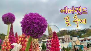 에버랜드 꽃 축제의 모습 '-' (Tra…