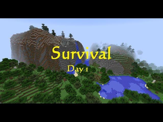 Survival day 1 - Gathering basic needs