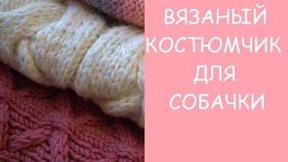 Вязание спицами.  Костюм для собачки своими руками
