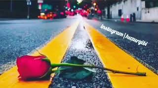 whatsapp ucun romantik video