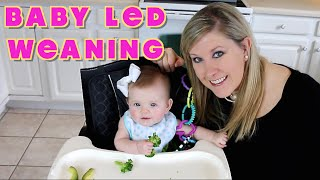 WHAT IS BABY LED WEANING?!
