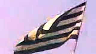 jamiat ulama islam flag new