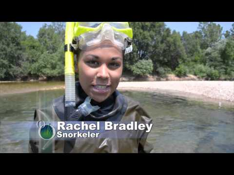 Underwater small mouth bass nest research