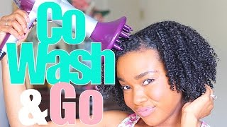 Co-Wash & Go w/ Flax Seed Gel