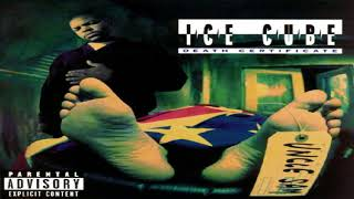 Ice Cube - Color Blind
