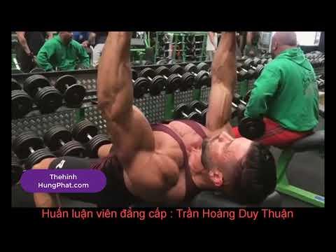 241 Cao thủ phòng Gym