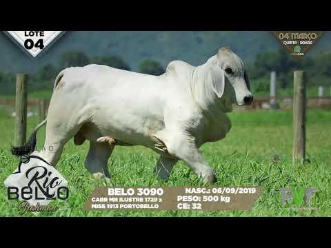 LOTE 04   BELO 3090