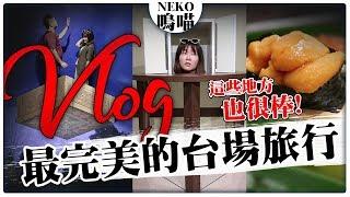日本東京台場一日旅行,海鷗線就能讓全家輕鬆玩得超開心|NeKo嗚喵.VLOG