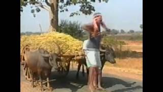 Halia Pila .. Pure Classic Old Sambalpuri Video Songs