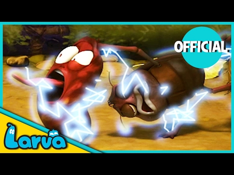 LARVA - ELECTRIC SHOCK | Best Cartoon Movie | Cartoons For C