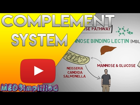 Complement System Made Easy- Immunology- Classical Alternate & Lectin pathway