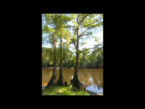 Yellow River Fish Camp Florida U.S.A.