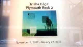 The Whitney Museum of American Art Trisha Baga New York