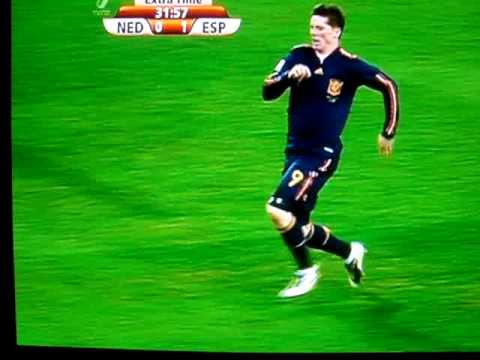 Fernando Torres Pulls His Hamstring! FIFA World Cup 2010 Final: Spain VS Netherlands