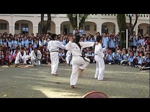 Trình diễn võ thuật / Gee (phong cách Taekwondo) [09.01.2012]