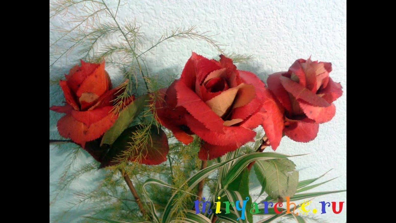 Картинки осенних березовых листиков
