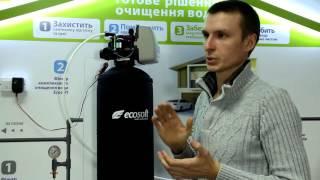 Фильтр для умягчения воды и удаления железа колонного типа Ecosoft FK 1465 CG(Специалист компании