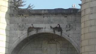 Puerta de Palmas.AVI