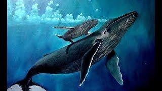 Світ синіх китів. Документальний фільм.
