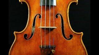 ストラディヴァリウス型バイオリンのご購入は横浜の専門店 弦楽器サラサ...