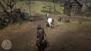 Red Dead Redemption 2  EXPLORING THE WORLD