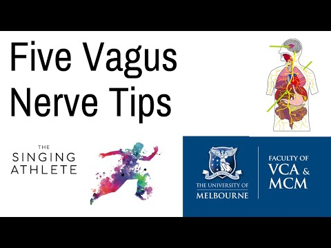 Five Tips for Boosting your Vagus Nerve