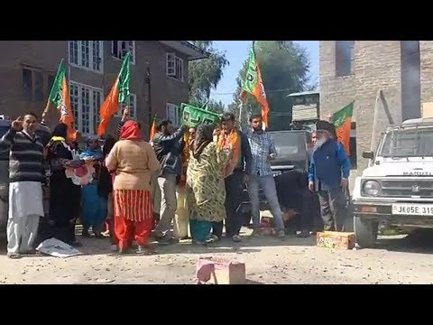 Municipal Polls: BJP sweeps 4 districts of South Kashmir
