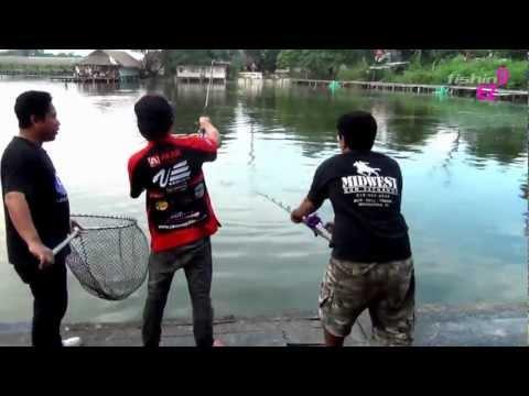 แข่งตกปลาบึก ยกที่2  fishingEZ