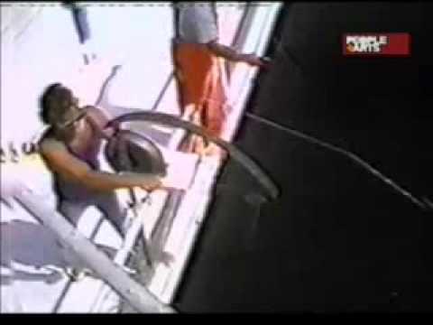 super mordida de tiburon en vivo - YouTube