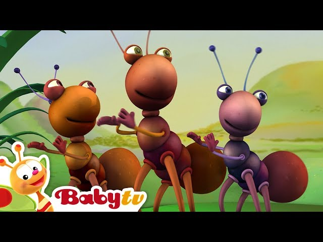 Big Bugs Band   Traditional African Music for Kids   BabyTV