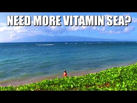 Direct oceanfront vacation rentals in Lahaina, Maui Hawaii