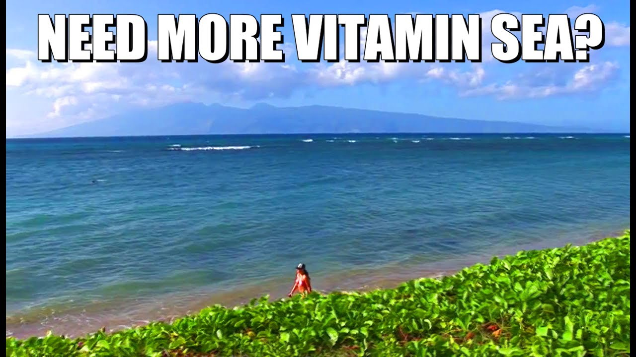 Direct Oceanfront Vacation Rentals In Lahaina Maui Hawaii