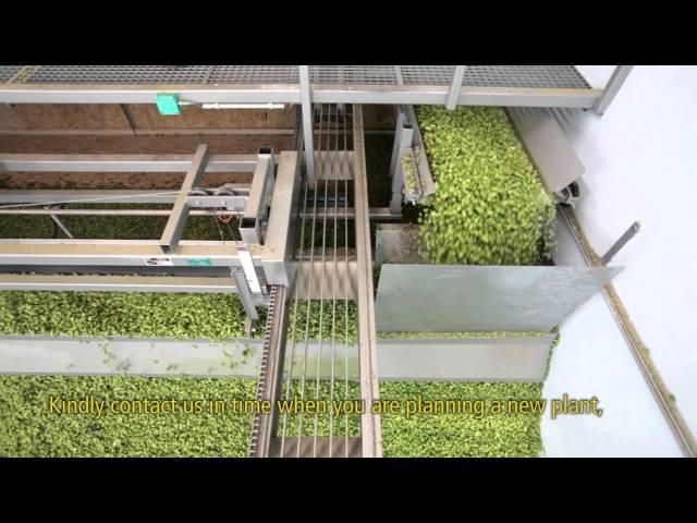 WOLF: Modern Hop Harvesting
