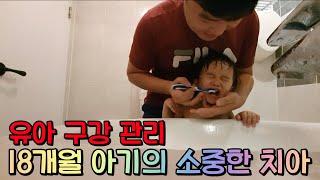 (육아브이로그) 18개월 아기의 구강 관리! 소중한 우…