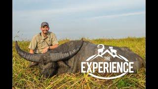 The Australian Water Buffalo Experience - Mark Peterson